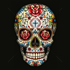 Rosey Candy Skull