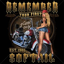 Remember Your First Softail