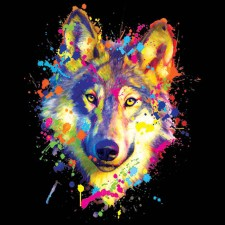 Neon Wolf Face