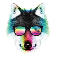 Summer Wolf Sunglasses