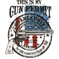 2nd Amendment Gun Permit